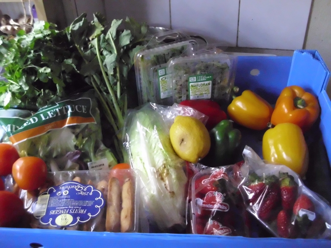 The findings of a previous bin dive with lots of fresh fruit and veg in it